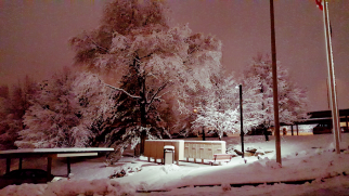 Screenshot_2015-12-14-19-49-09